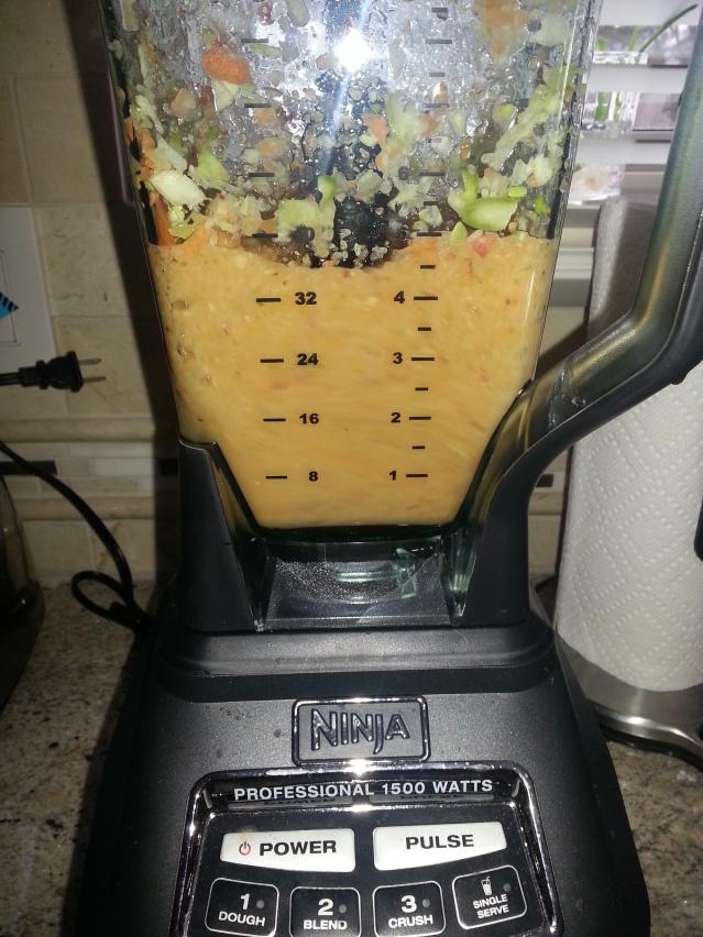 juicing with a ninja 1500 mega kitchen